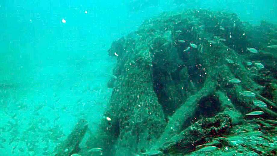 Fish swim through an ancient forest found 60 feet underwater about 10 miles offshore from Mobile, Ala. The forest was apparently buried under a thick layer of sand for eons until it was uncovered by giant waves during Hurricane Katrina. Photo: AP