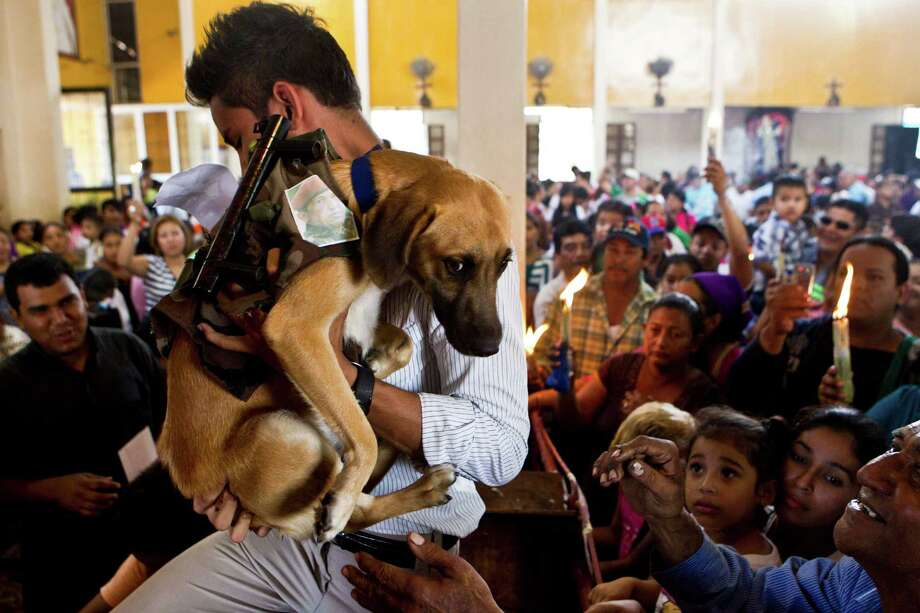 A man holds up his dog wearing a military costume and a small picture of Venezuela's President Hugo Chavez during an animal blessing ceremony in honor of Saint Lazarus, patron of the sick, at a church in the Monimbo neighborhood of Masaya, Nicaragua, Sunday, March 17, 2013. Catholics in Nicaragua associate Saint Lazarus with dogs, and dress up their pets for a Catholic blessing, asking the saint to keep their dogs healthy. Photo: Esteban Felix, Associated Press / AP