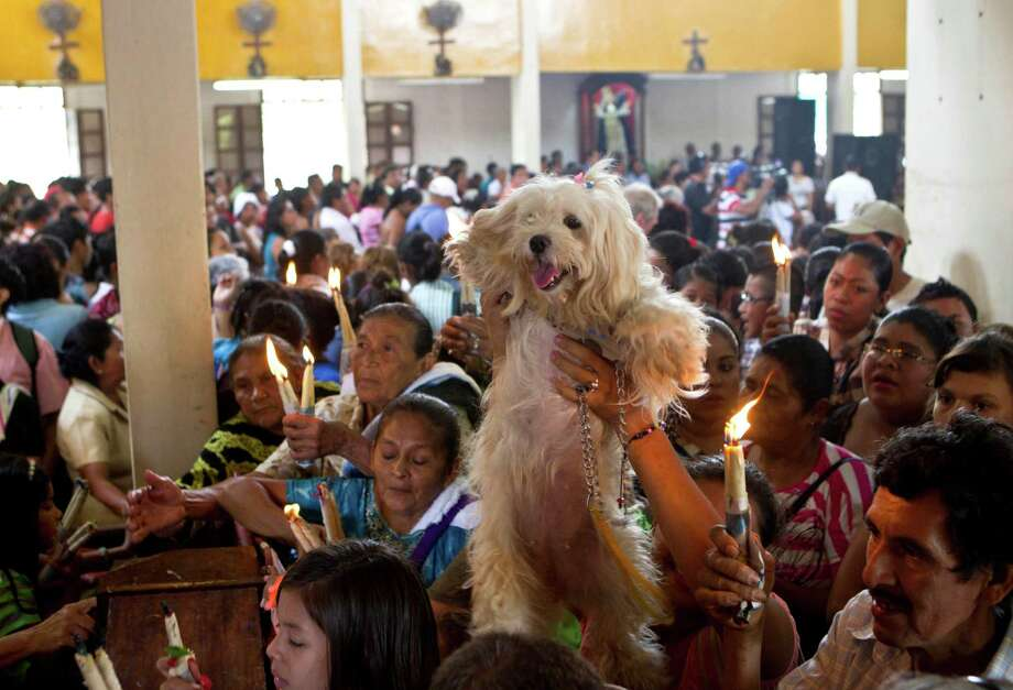 A woman holds up a her dog during an animal blessing ceremony in honor of Saint Lazarus, patron of the sick, at a church in the Monimbo neighborhood of Masaya, Nicaragua, Sunday, March, 17, 2013. Catholics in Nicaragua associated Saint Lazarus with dogs, and dress up their pets for a Catholic blessing, asking the saint to keep their dogs healthy. Photo: Esteban Felix, Associated Press / AP