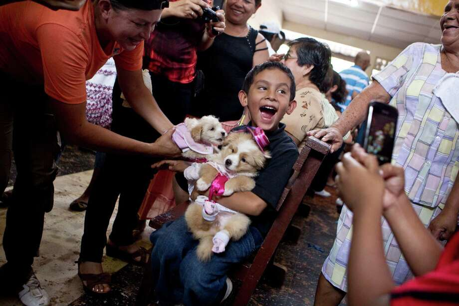 A boy smiles for pictures as he holds his dogs wearing costumes on the feast day of Saint Lazarus, known as a protector of animals, in particular dogs, at a church in the Monimbo neighborhood of Masaya, Nicaragua, Sunday, March, 17, 2013. Parishioners dress up their pets for the Catholic church ceremony and ask the saint to keep their dogs healthy. Photo: Esteban Felix, Associated Press / AP