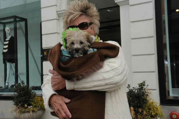 Fran Vitti, of Port Chester, N.Y., with her dog Coco Chanel waiting for the GreenwichâÄôs 39th annual St. PatrickâÄôs Day parade at Greenwich Avenue, in Greenwich, Conn., March 17, 2013. Photo: Helen Neafsey / Greenwich Time