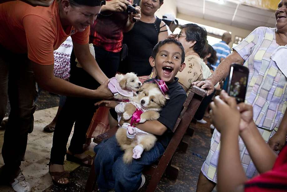 A boy smiles for pictures as he holds his dogs wearing costumes on the feast day of Saint Lazarus, known as a protector of animals, in particular dogs, at a church in the Monimbo neighborhood of Masaya, Nicaragua, Sunday, March, 17, 2013. Parishioners dress up their pets for the Catholic church ceremony and ask the saint to keep their dogs healthy. Photo: Esteban Felix, Associated Press