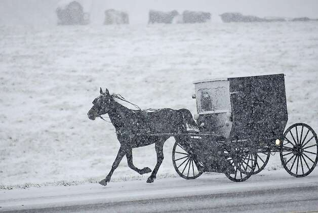 The horse knows the way: Despite heavy snow, an Amish family is determined to get to church on time for services near Maysville, Ky. Photo: Terry Prather, Associated Press