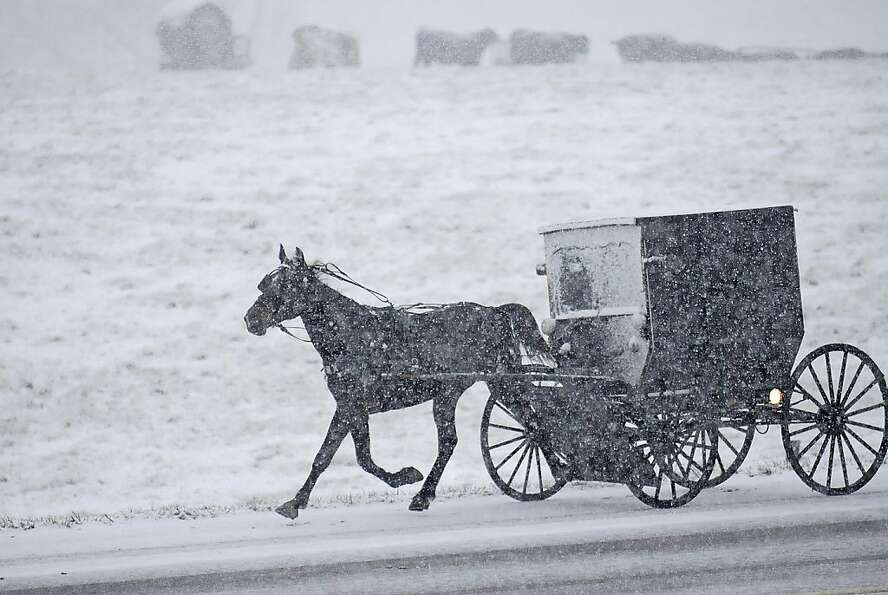 The horse knows the way: Despite heavy snow, an Amish family is determined to get to church o