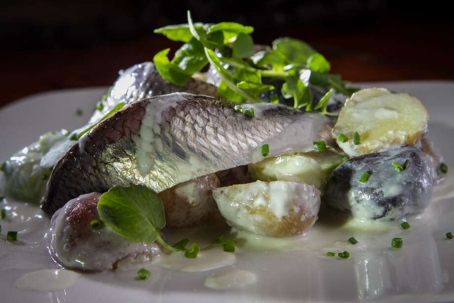 The pickled herring.