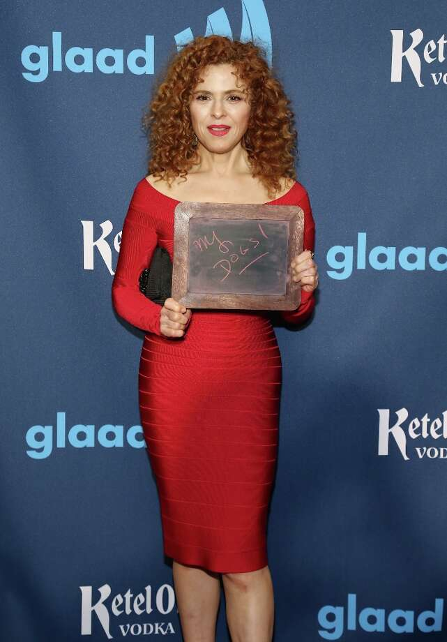 Bernadette Peters attends the Ketel One VIP Red Carpet Suite at the 24th Annual GLAAD Media Awards at the Marriott Marquis on March 16, 2013 in New York. Photo: Neilson Barnard, Getty Images For Ketel One / 2013 Getty Images