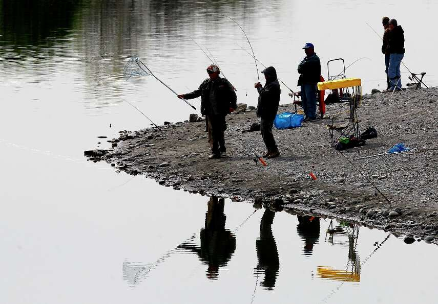 At Horseshoe Lake, a fisherman hauls in a rainbow trout Monday March 18, 2013. The Alameda County Wa