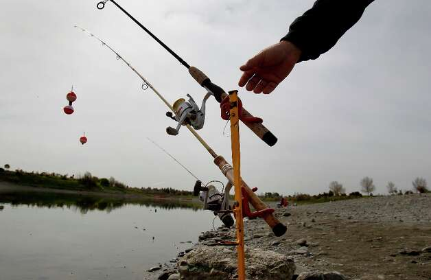 At Horseshoe Lake in Fremont, Calif. fishermen reach for their poles Monday March 18, 2013. The Alameda County Water District and the East Bay Regional Park District are asking fisherman to trade in their old lead weights for steel and ceramic tackle because lead leaches into the water at fishing spots like Quarry Lakes in Fremont, Calif. Photo: Brant Ward, The Chronicle / ONLINE_YES