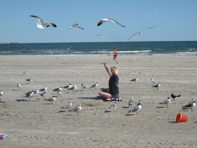 Vibrant bird life and large beaches are two of the main reasons Port Aransas stands out as a vacation destination.