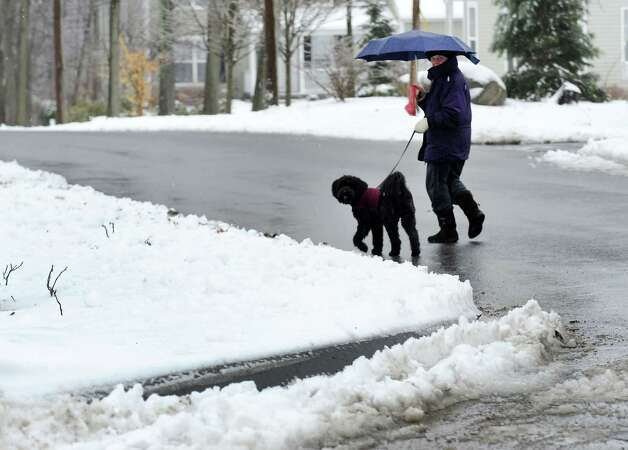 A woman and her dog brave the wet weather to take a walk down Coe La. in Derby, Conn. on Tuesday March 19, 2013. Photo: Cathy Zuraw / Connecticut Post