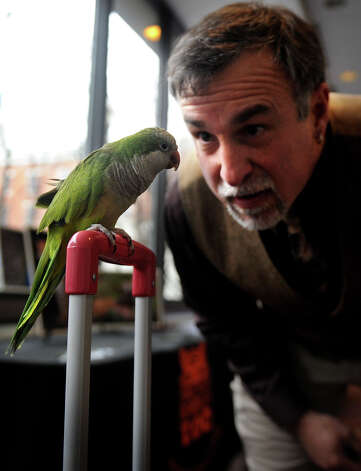 Gregg Dancho, director of the Beardsley Zoo, gets eye to eye with his pet monk parakeet Boomer outside the mayor's annual state of the city address at the Holiday Inn in Bridgeport, Conn. on Tuesday, March 19, 2013. Photo: Brian A. Pounds / Connecticut Post