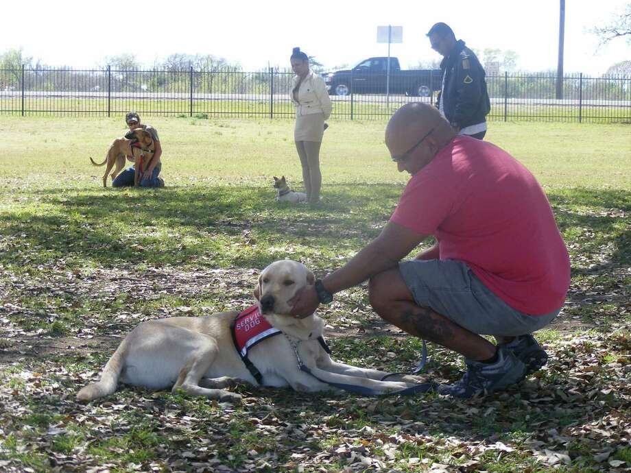 "Ray Gomez pets his dog, Skip, during an instruction break at Friday's ""Train A Dog, Save A Warrior"" program at Pickrell Park in Schertz. Photo: David DeKunder / NE Herald"