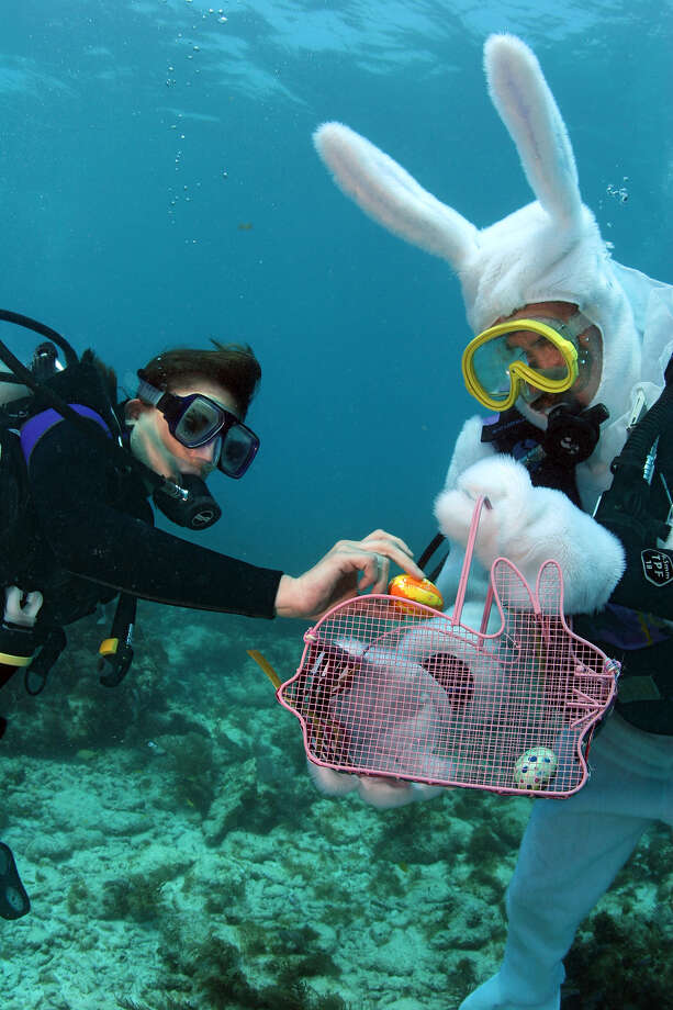 San Antonio is holding its annual underwater egg hunt at the San Antonio Natatorium on Saturday morning. Photo: BOB CARE, AP / FLORIDA KEYS NEWS BUREAU