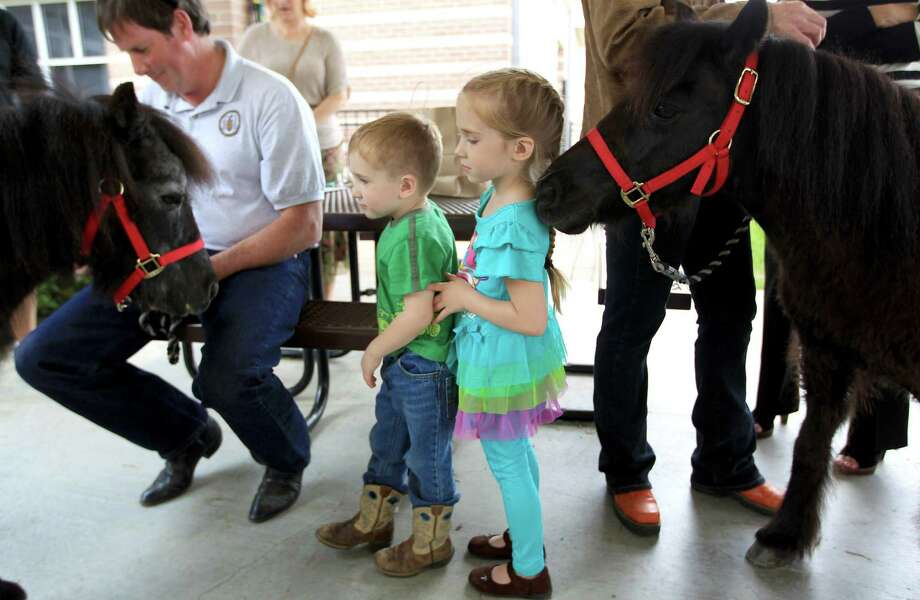 "Luke, 2, and his sister, MaKinnley, 4 get up close with ""Stuart"", left, and ""Royal Anne"" with Personal Ponies. Photo: Karen Warren, Houston Chronicle / © 2013 Houston Chronicle"