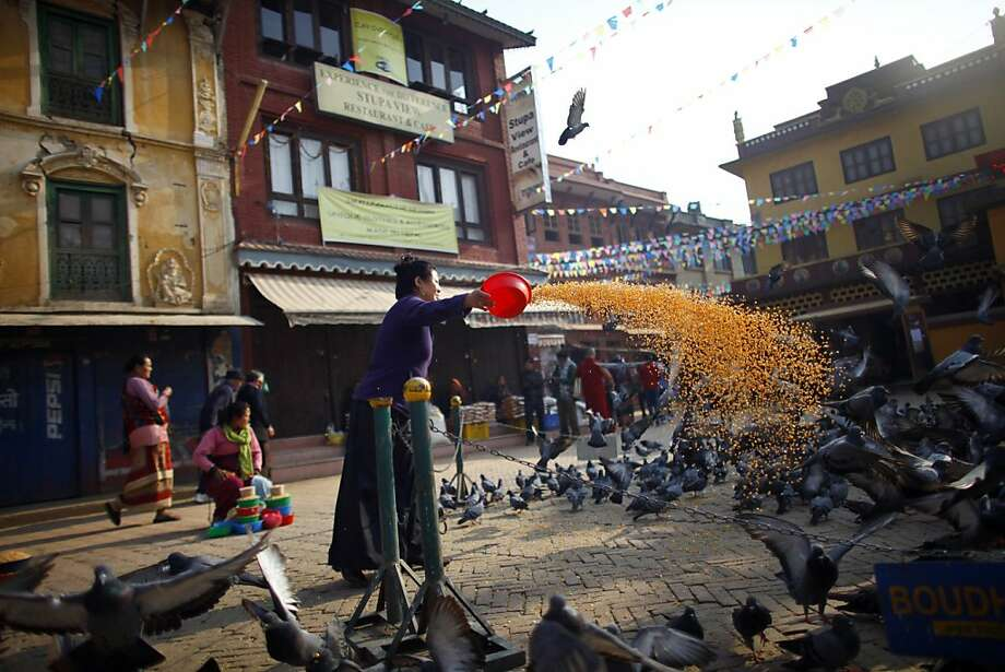 A Nepalese Buddhist woman feeds pigeons near the Boudhanath Stupa in Katmandu, Nepal, Tuesday, March 19, 2013. A Tibetan monk self immolated last month in the premise of this stupa, an important pilgrimage site for Buddhists. (AP Photo/Niranjan Shrestha) Photo: Niranjan Shrestha, Associated Press