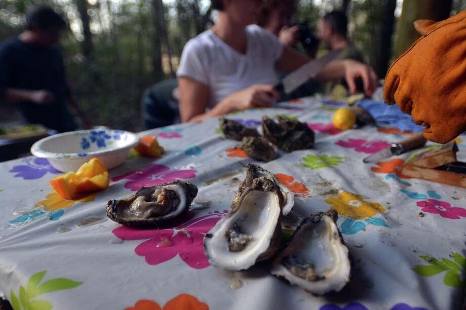 Rebecca Boone prepares fresh Gulf oysters at Oysterfest. Beth Rankin/cat5 Photo: Beth Rankin / Beth Rankin