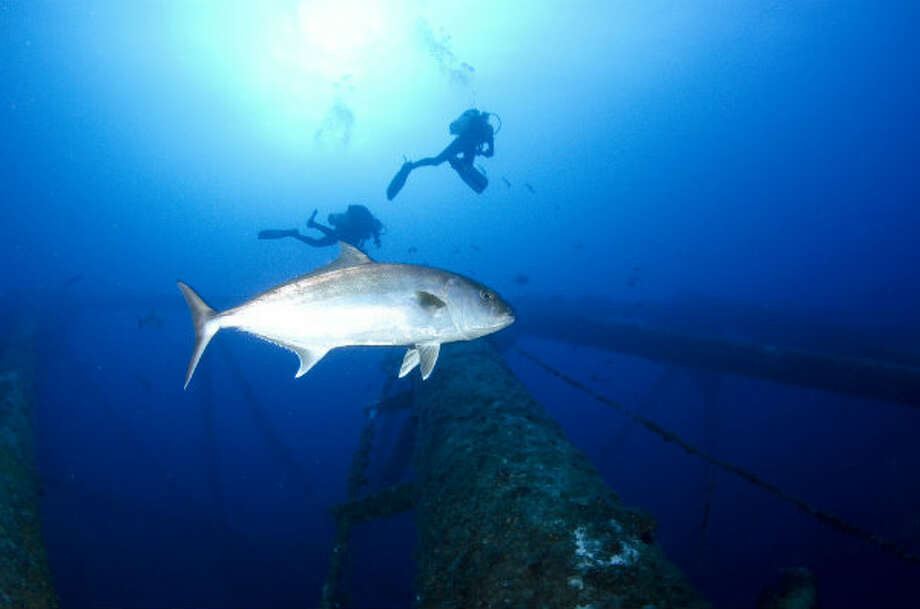 Divers and a fish swim by a rig that has become an artificial reef in the Gulf of Mexico.