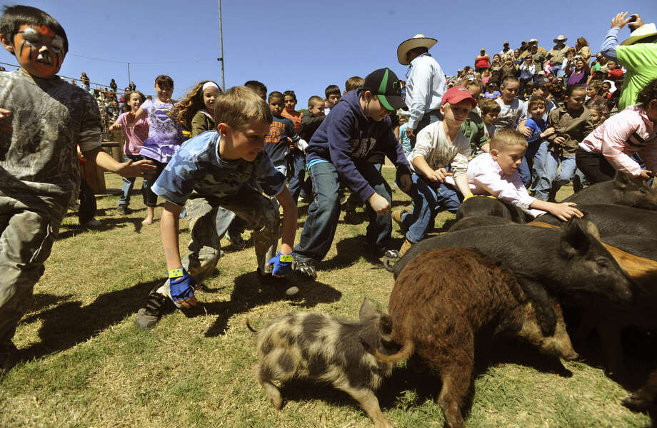 Kids chase piggies during the Sabinal Wild Hog Festival in 2009. The fest's 22nd edition is this weekend; go to www.wildhogfestival.com. Photo: Billy Calzada / San Antonio Express-News