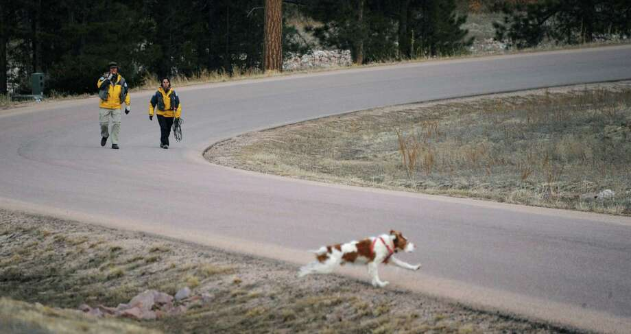 Searchers use a dog Wednesday to comb the area for suspects around the Monument, Colo. home of Colorado Department of Corrections Executive Director Tom Clements. Clements was killed Tuesday at his home. Photo: Mark Reis, MBI / THE GAZETTE