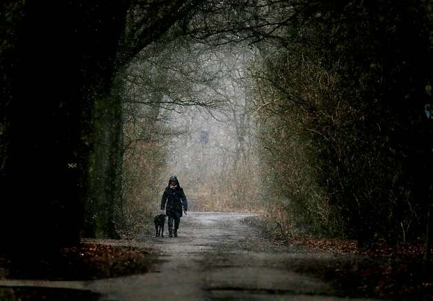 A stroller walks his dog while snow falls at the beginning of spring in Duisburg, Germany, Wednesday, March 20,2013. (AP Photo/Frank Augstein) Photo: Frank Augstein, Associated Press
