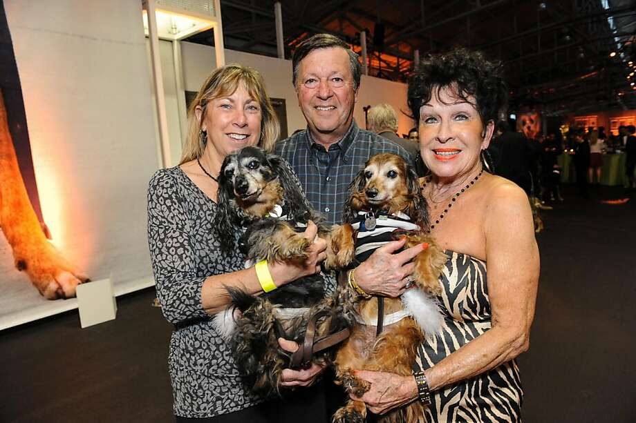Michelle Bright, Harry Bright and Gloria Marchi with Casey and Cleo at the San Francisco SPCA's Bark & Whine Ball 2013. Photo: Drew Altizer Photography