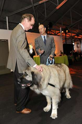 Bud Greer and Giulio Salarpi at the San Francisco SPCA's Bark & Whine Ball 2013. Photo: Drew Altizer Photography