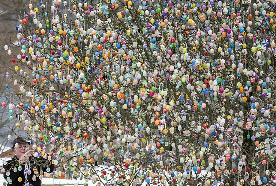 Trimming the tree: As he does every year, Volker Kraft hangs thousands of plastic Easter eggs on his apple tree in Saalfeld, Germany, confounding ground-based Easter egg hunters in the neighborhood. Photo: Michael Reichel, AFP/Getty Images