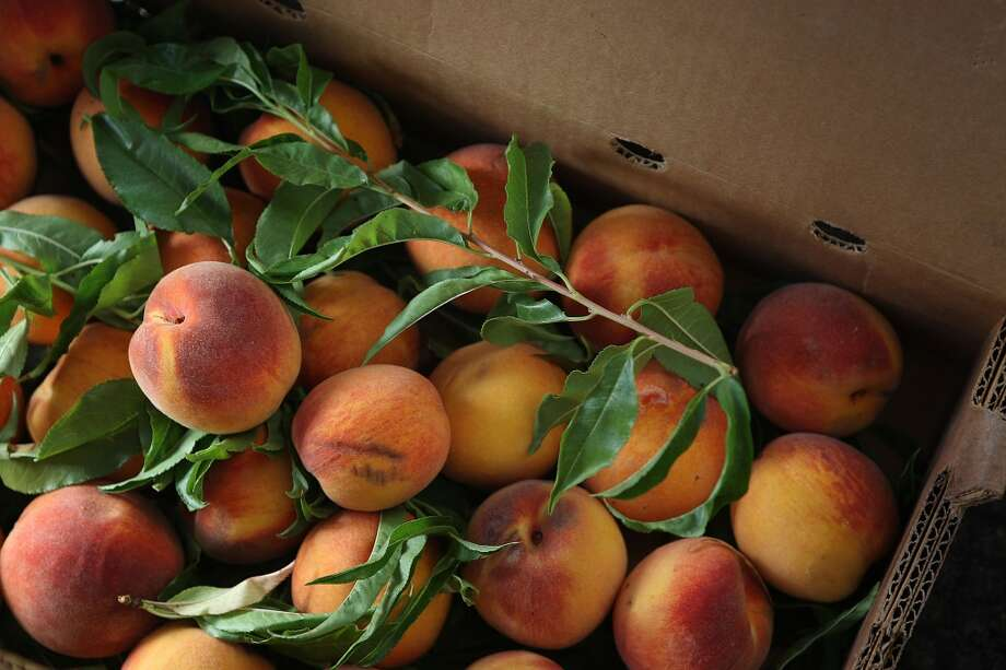 Peaches! From last year's harvest.
