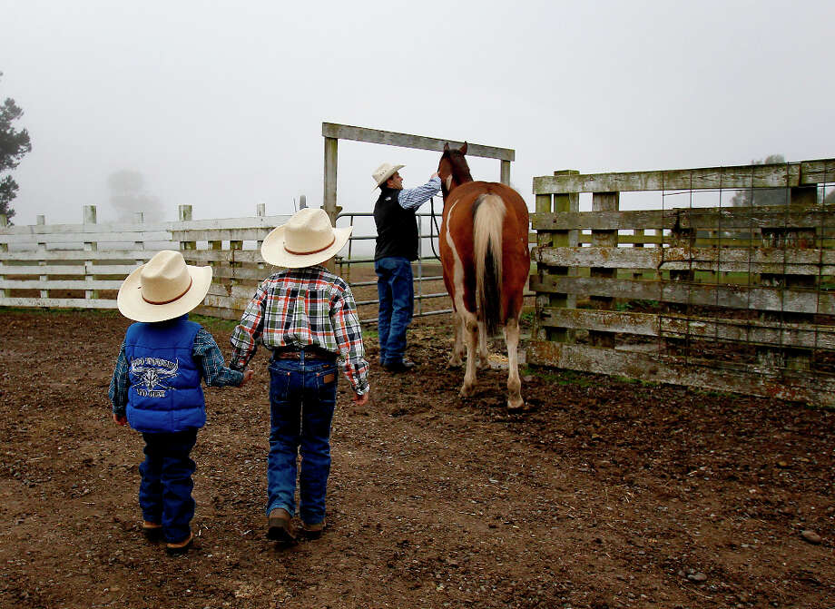 Clint Victorine tends to a horse as his boys Ian (left) and Evan watch Thursday March 14, 2013 in Hydesville, Calif. Clint Victorine beat the odds and started a business raising organic, pasture fed cattle near Eureka, Calif.  His organic beef label is popular in the Bay Area, labeled as Eelriver Ranch and Pacific Pastures. Photo: Brant Ward, The Chronicle / ONLINE_YES