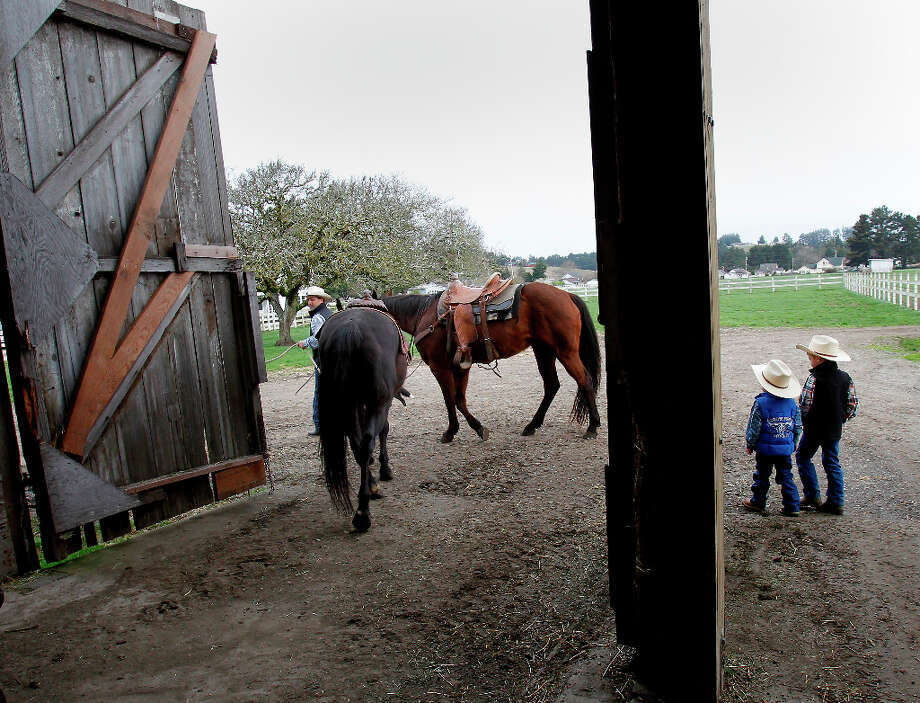 In Hydesville, Calif., Clint Victorine leads two horses from a barn as his boys Evan and Ian watch Thursday March 14, 2013. Clint Victorine beat the odds and started a business raising organic, pasture fed cattle near Eureka, Calif.  His organic beef label is popular in the Bay Area, labeled as Eelriver Ranch and Pacific Pastures. Photo: Brant Ward, The Chronicle / ONLINE_YES