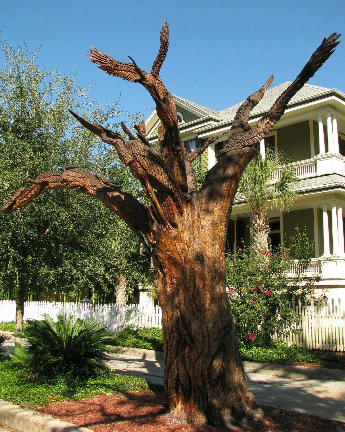 At 1620 Sealy Street, a sculpture called the Birds of Galveston rises at least 15 feet into the air. Sculptor Dale Lewis carved 17 birds straining to take flight along limbs arching in various directions.