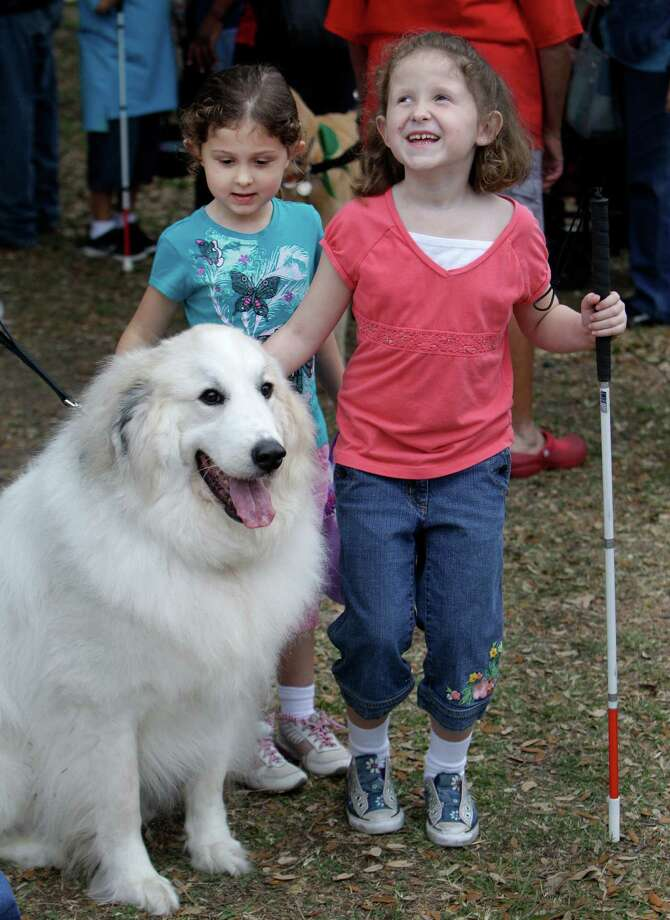 Megan Dunn, 4, left, and her sister, Ashlynn Dunn, 7, pet a dog named Denali owned by Caring Critters member Christy Almond during activities at the Beeping Easter Egg Hunt at The Lighthouse of Houston Community Services Center. Photo: Melissa Phillip, Houston Chronicle / © 2013  Houston Chronicle
