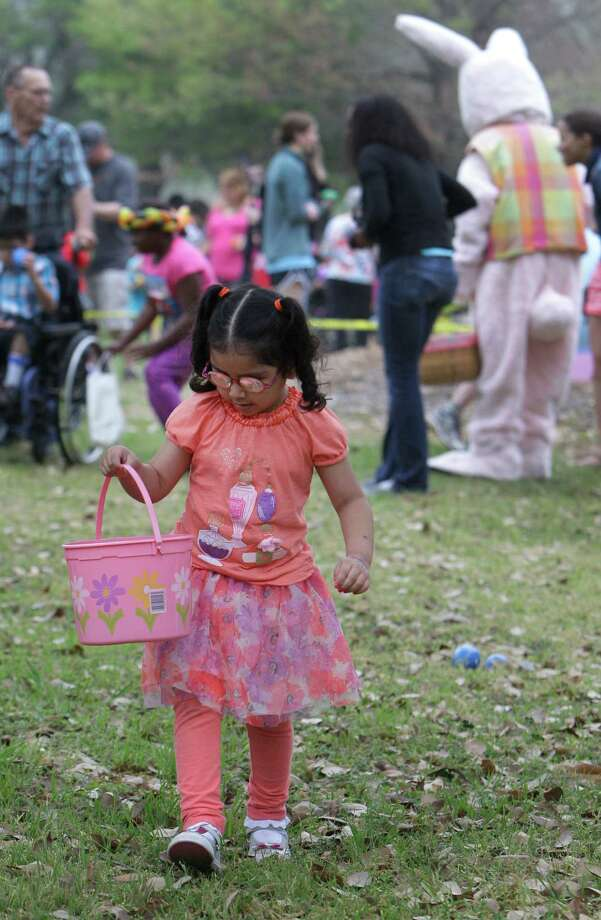 Heilen Munoz, 4, searches for eggs during the Beeping Easter Egg Hunt. Photo: Melissa Phillip, Houston Chronicle / © 2013  Houston Chronicle