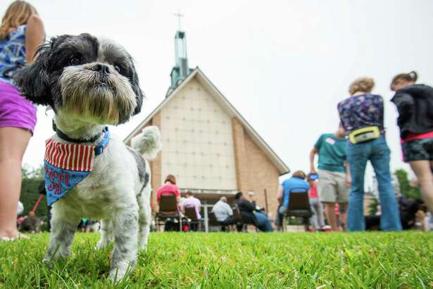 Dogs and their owners wait for services to begin during the annual  Blessing of the Animals at Bellaire United Methodist Church on Saturday, March 23, 2013.