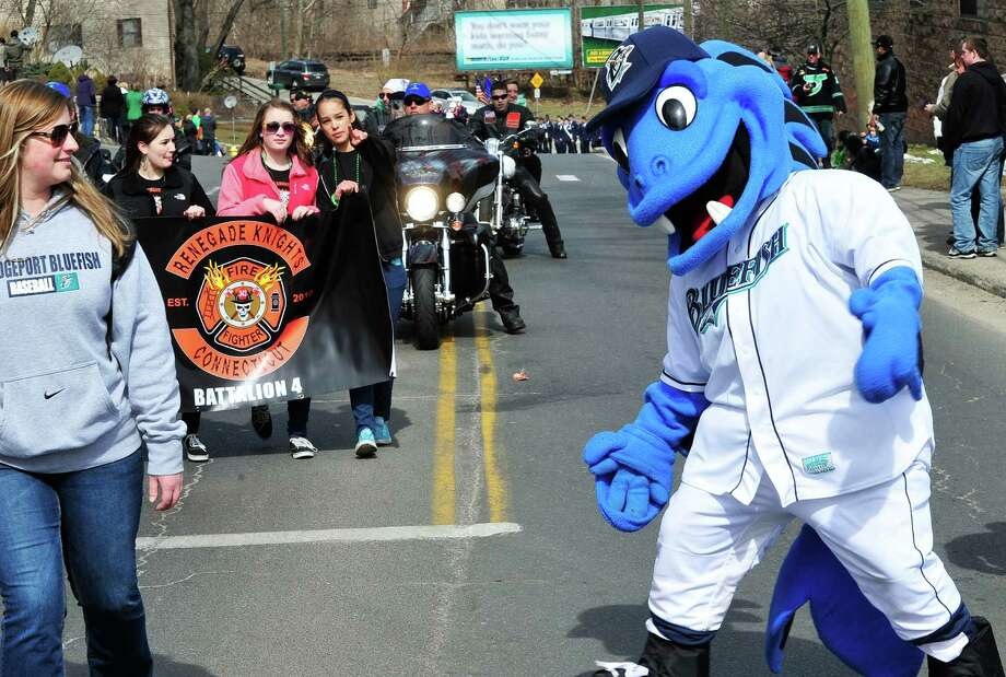 The Bridgeport Bluefish mascot marches in Danbury's St. Patrick's Day Parade and Danbury Whalers Commissioner's Cup victory celebration Sunday, March 24, 2013 in Conn. Photo: Michael Duffy / The News-Times