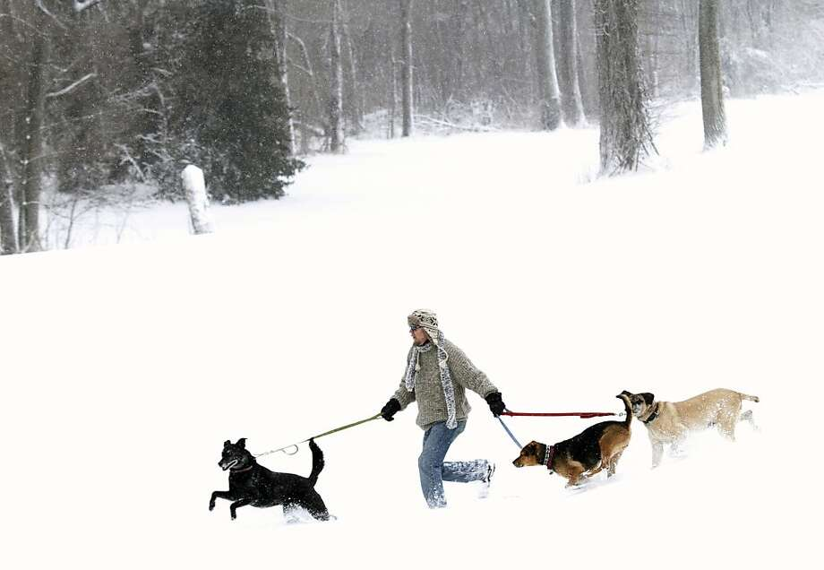Brian Runk runs with his three dogs near the North Lawrence levee Sunday, March 24, 2013 in Lawrence, Kan. An overnight snow left several inches on the ground around Lawrence and throughout the Midwest.  Photo: Mike_Yoder, Associated Press