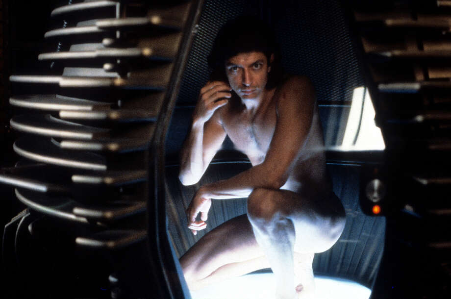 """The Fly"" (1986)  This is what happens when a real cinematic artist (David Cronenberg) takes a known story  and makes it his own. Photo: Archive Photos, Getty Images / 2012 Getty Images"