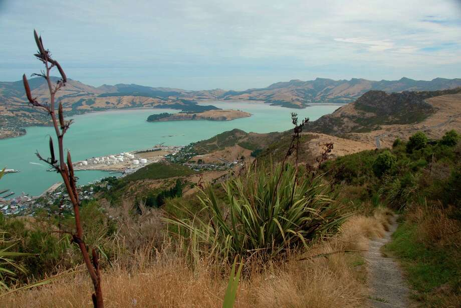Although close to an industrial harbor and the South Island's biggest city, the Port Hills give a sense of wild New Zealand.