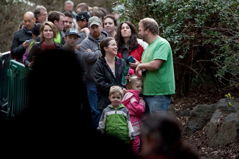 Spectators wait in line as Woodland Park Zoo's new lion cubs make their public debut.