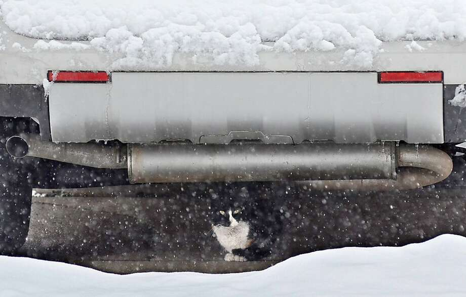 That's not your engine that's purring: One of the best places to avoid getting snowed on in Terre Haute, Ind., is under an SUV. Photo: Jim Avelis, Associated Press