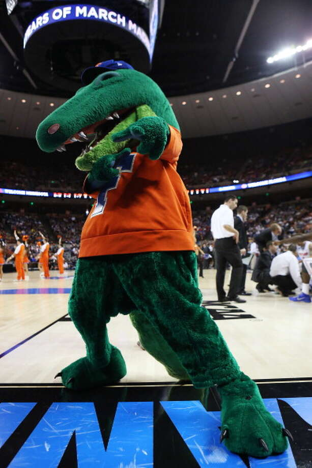 AUSTIN, TX - MARCH 24:  The Florida Gators mascot performs in the first half against the Minnesota Golden Gophers during the third round of the 2013 NCAA Men's Basketball Tournament at The Frank Erwin Center on March 24, 2013 in Austin, Texas. Photo: Stephen Dunn, Getty Images / 2013 Getty Images