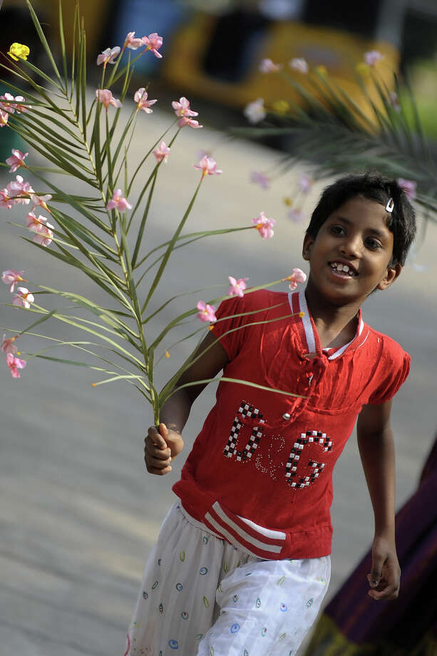 An Indian Christian devotee holds palm leaves during a Palm Sunday procession in Secunderabad, the twin city of Hyderabad, on March 24, 2013. Palm Sunday marks the sixth and last Sunday of the Christian Holy month of Lent and the beginning of Holy week. Photo: NOAH SEELAM, AFP/Getty Images / 2013 AFP