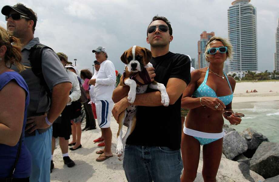 "4. Miami: score of 57.7. NerdWallet wrote: ""Miami has well-priced veterinary care as well as a highly walkable layout, so you can easily fit walking your dog into your schedule, as a car is not necessary for many day-to-day activities in the city. Miami's Parks, Recreation and Open Spaces Department has 13 dog-friendly parks, and the Amelia Earheart Bark Park has five acres of walkways, benches and drinking fountains designed specifically for dogs."" Photo: Joe Raedle, Getty Images / 2012 Getty Images"