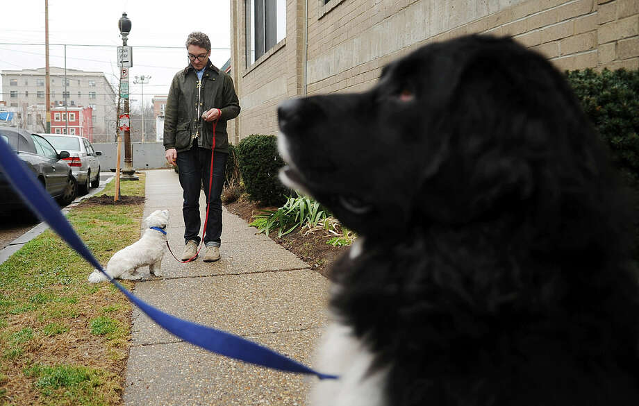 Scott Gilmore keeps his dog Milou's attention as he walks toward trainer Jamie Eaton's dog Uka, in an effort to get rid of Milou's hostility to other dogs. Photo: Astrid Riecken / Washington Post
