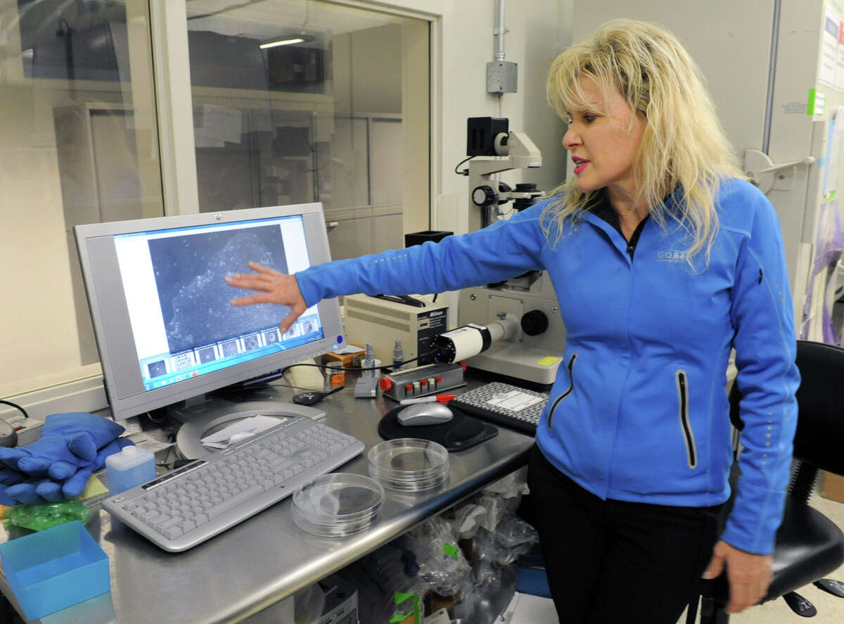 Janet Paluh, associate professor of nanobioscience, points to cells on her computer screen in a lab at the College for Nanoscale Science on Thursday Dec. 20, 2012 in Albany, N.Y. (Lori Van Buren / Times Union)