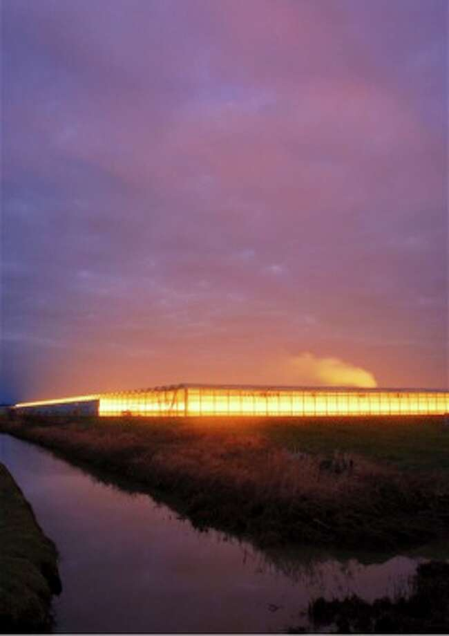 Stuart McCall, Landner Greenhouse, 2007, photography, 30x20