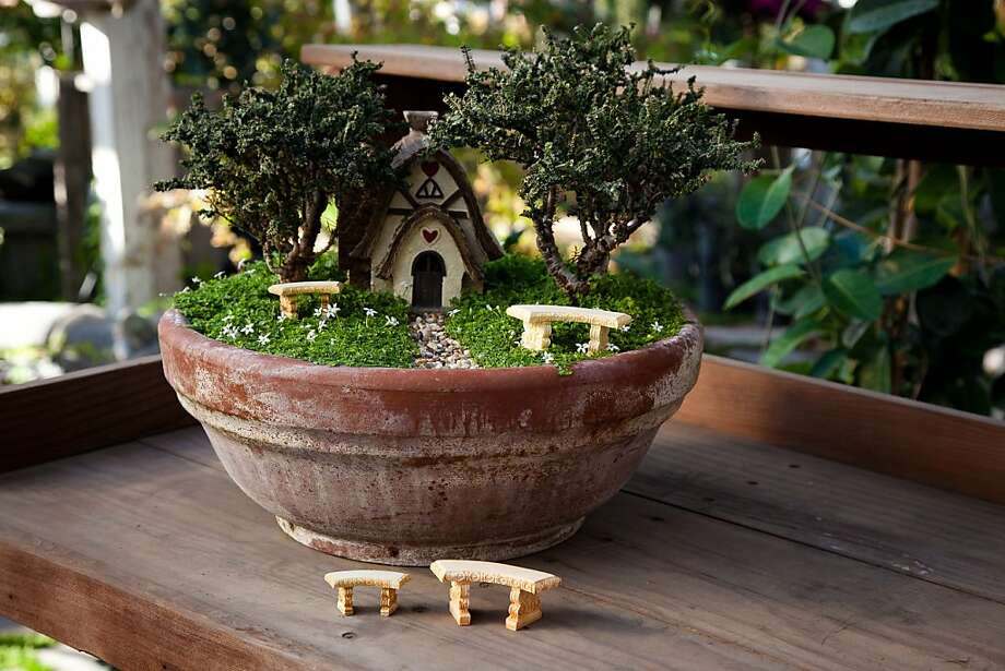 julie bawden davis and beverly turner offer a list of more than 100 plants suitable - Fairy Garden Plants