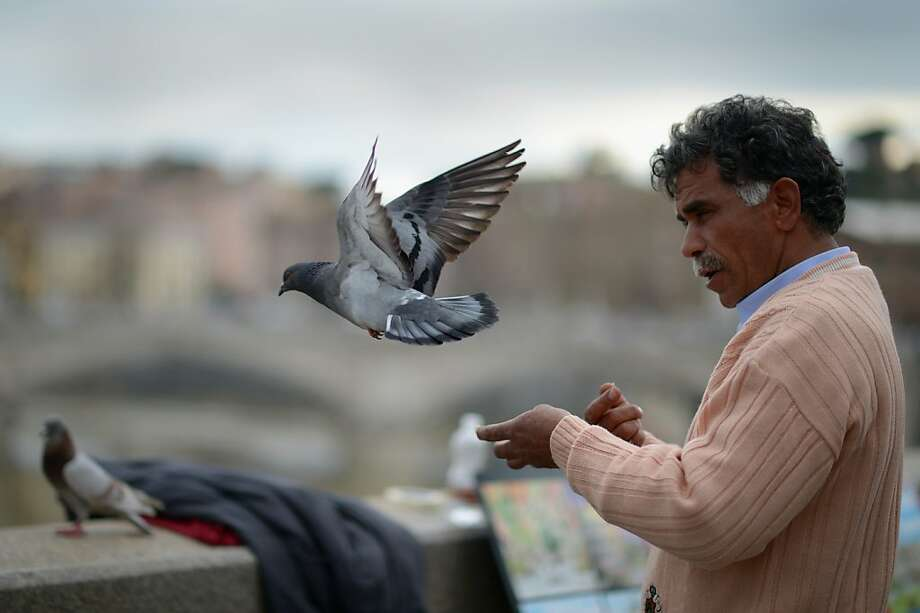 ROME, ITALY - MARCH 25: A man feeds pigeons on March 25, 2013 in Rome, Italy. Pope Francis yesterday led his first mass of Holy Week as pontiff by celebrating Palm Sunday in front of thousands of faithful and clergy.  (Photo by Jeff J Mitchell/Getty Images) Photo: Jeff J Mitchell, Getty Images