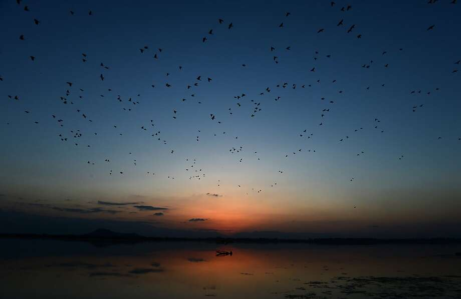 Birds fly overhead as a Kashmiri fisherman fishes on Dal lake at sunset in Srinagar on March 25, 2013.  Kashmir is divided between nuclear-armed rivals India and Pakistan, with both claiming the disputed territory in its entirety. Armed rebels have fought Indian security forces in Kashmir since 1989 for the independence of the region or its merger with Pakistan. The conflict has left tens of thousands, mostly civilians, dead so far. TAUSEEF MUSTAFA/AFP/Getty Images Photo: Tauseef Mustafa, AFP/Getty Images