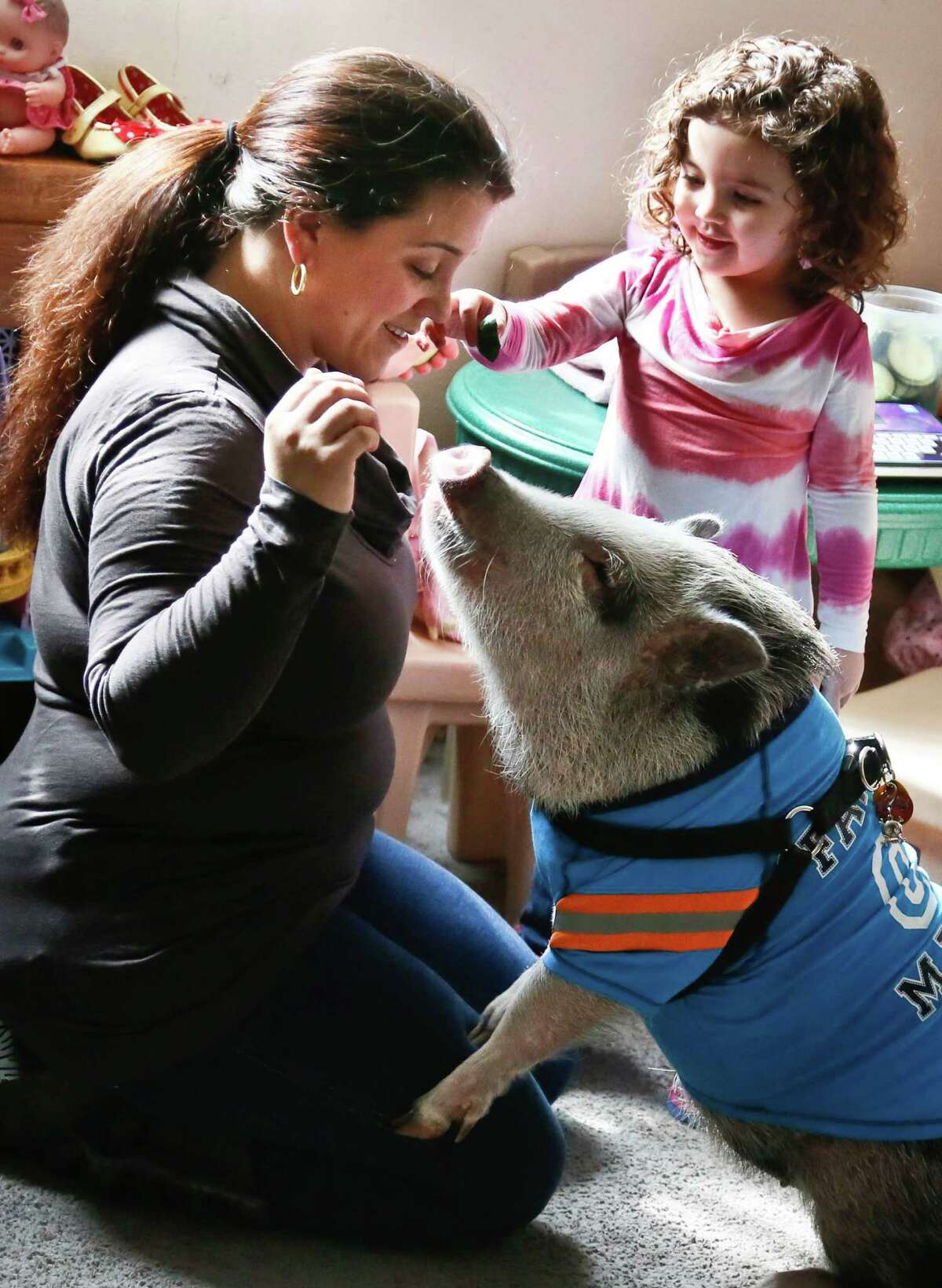 Danielle Forgione, left, and her daughter Olivia, 3, play with Petey, the family's pet pig, on Thursday, March 21, 2013, in the Queens borough of New York. Forgione is scrambling to sell her second-floor apartment after a neighbor complained about 1-year-old Petey the pig to the co-op board. In November and December she was issued city animal violations and in January was told by both the city and her management office that she needed to get rid of the pig.